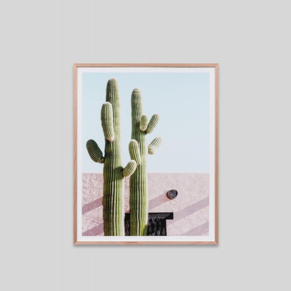 Framed Print - Cactus Villa - Oxley and Moss