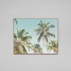 Canvas Print - Summer Palms - Oxley and Moss