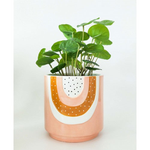 Woodstock Rainbow Planter Pink