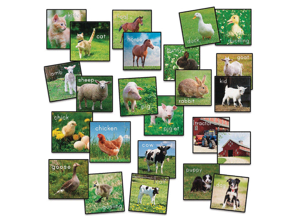 Farm Animals Carpet Squares
