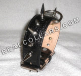 1-1/2 wide leather dog collar with spikes RC17