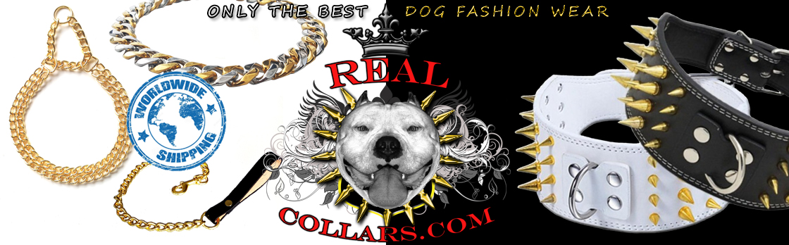 3 wide leather dog collar The Freak RC02 – REALCOLLARS