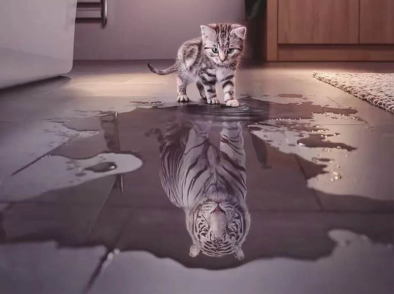 "Bei Bi La 1000 Piece Jigsaw Puzzle ""Cat Tiger Reflection"""