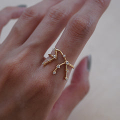 Aquarius Constellation Ring - Tippy Taste Jewelry