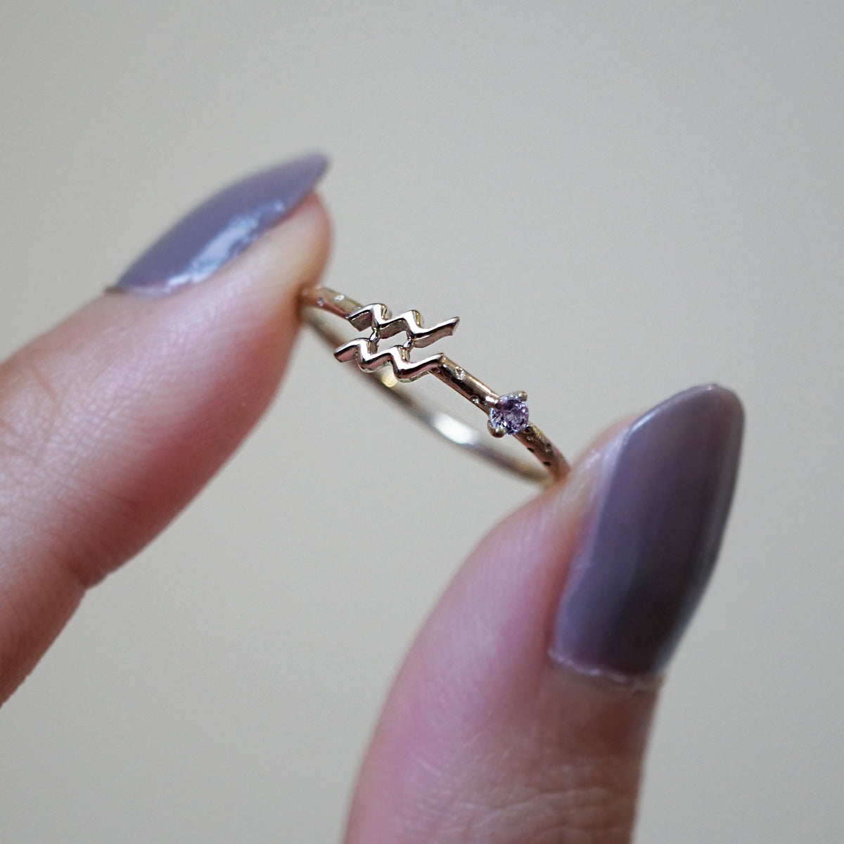 14K Aquarius Horoscope Birthstone Ring (Amethyst + Garnet)