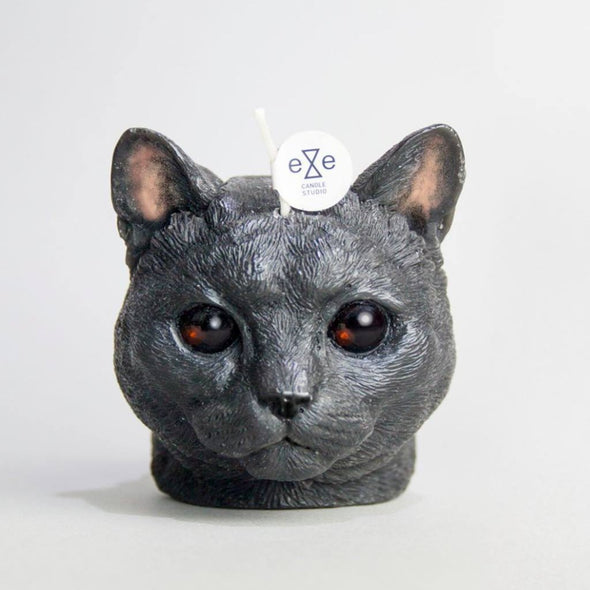 Eye Candle Cat w/ Glasses Eyes - Short Hair - Black