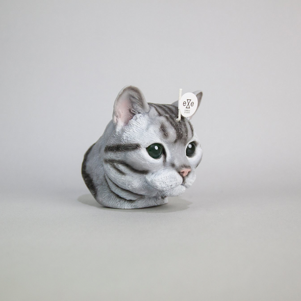Cat w/ Glasses Eyes - Short Hair - Grey