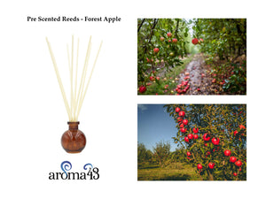 Forest Apple Pre Scented Reeds