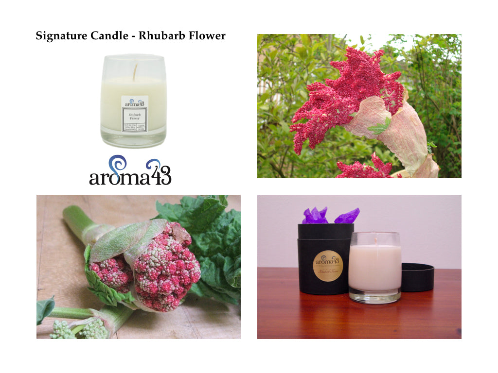 Rhubarb Flower Signature Candle