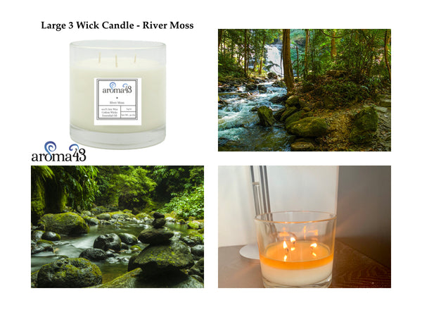 River Moss Large 3 Wick Signature Candle