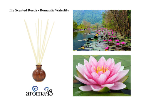 Romantic Waterlily Pre Scented Reeds