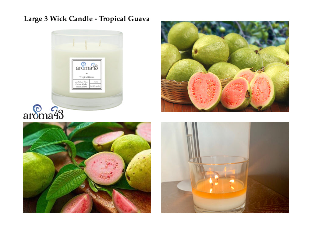 Tropical Guava Large 3 Wick Signature Candle