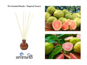 Tropical Guava Pre Scented Reeds
