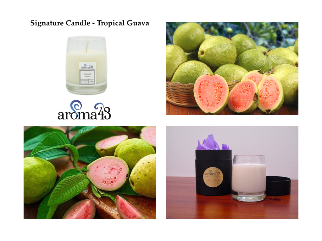 Tropical Guava Signature Candle
