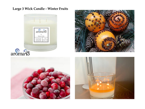 Winter Fruits Large 3 Wick Candle