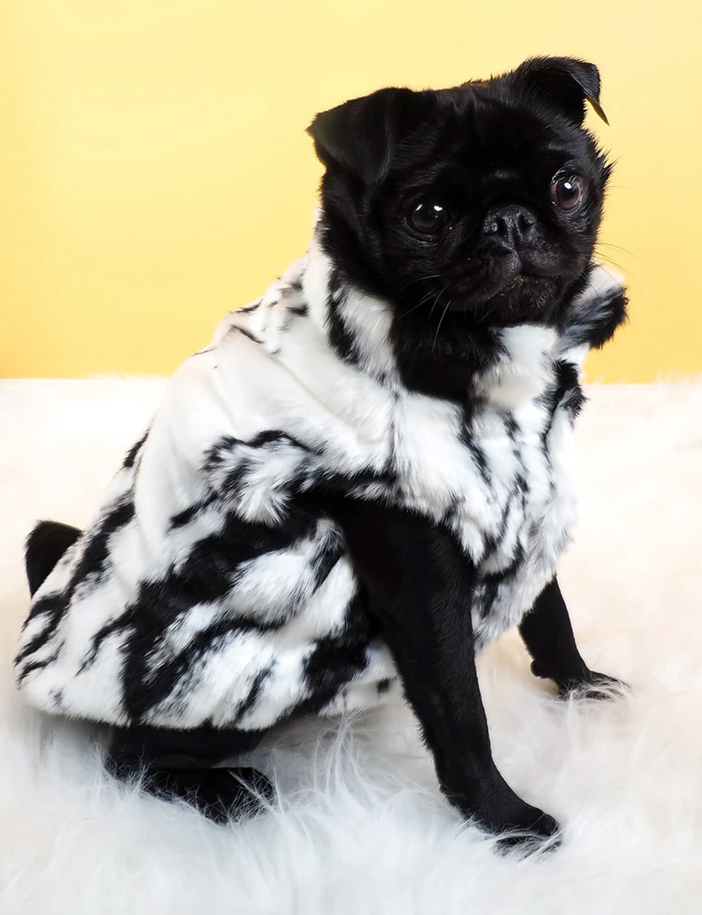 SNOW LEOPARD FAUX FUR DOG JACKET