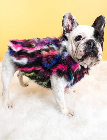 NEON DREAMS FAUX FUR DOG JACKET