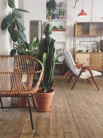 forest London shop style inspiration