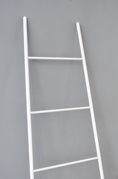 Contemporary Rack Ladder