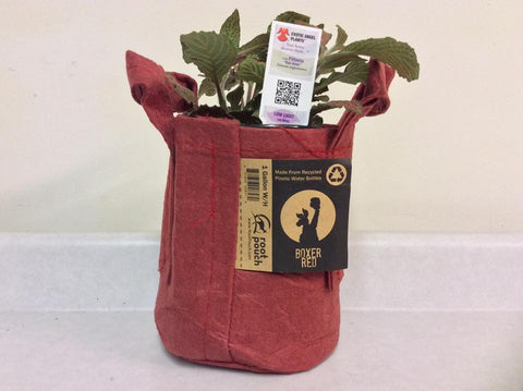 Root Pouch Non-Degradable Reusable Grow Bags,One Gallon, Boxer RED With Handles! Bundle Of 10, Best Quality!