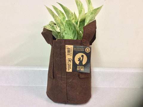 Root Pouch Non-Degradable Reusable Grow Bags,One Gallon, Boxer Brown With Handles! Bundle Of 10, Best Quality!