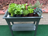 Gro-Matic Deluxe With Shelf Totally Automatic Self Watering Deck And Patio Planter System/ Sage Green Model 300 Deck And Patio Planter