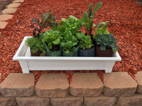 Gro-Matic Totally Automatic Self Watering Deck And Patio Planter System/ White Model 100 Deck And Patio Planter