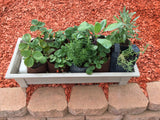 Gro-Matic Totally Automatic Self Watering Deck And Patio Planter System/ Desert Sand Model 100 Deck And Patio Planter