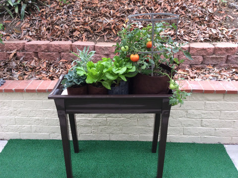 Gro-MaticTotally Automatic Self Watering Deck And Patio Planter System/ Chocolate Brown Model 200 Deck And Patio Planter