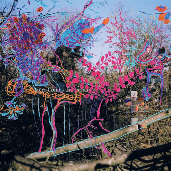 Animal Collective - Here Comes The Indian