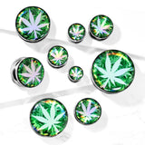 PAIR Hologram Pot Leaf Screw Fit Tunnels Ear Plugs Gauges Earlets Body Jewelry