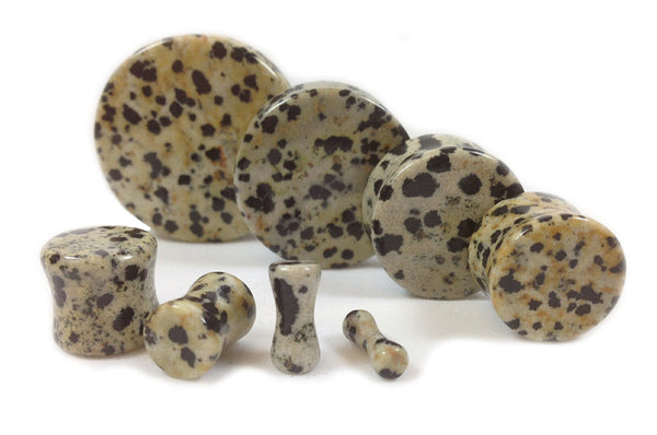 Stone Plugs Dalmatian Jasper Organic - by the pair