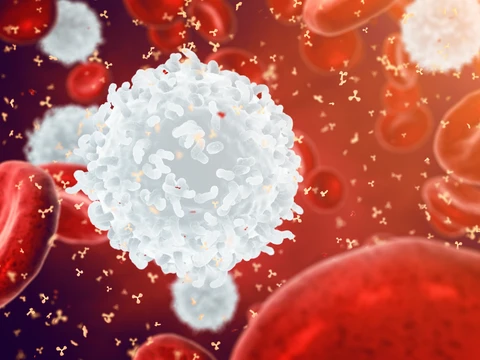 What is Transfer Factor and How Does it Help the Immune System