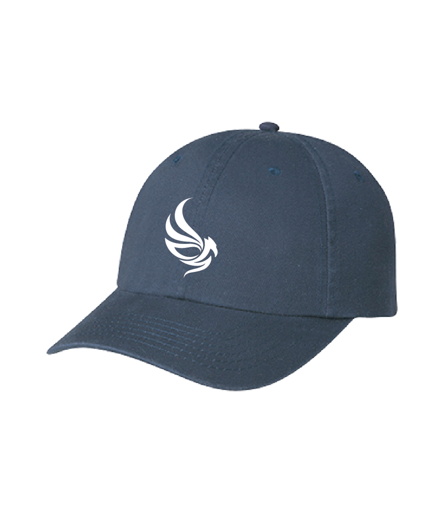 VCS - Walkathon 2019 Classic Dad Hat
