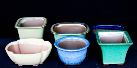 "Japanese 4"" to 5""  Shohin & Mame Ceramic Bonsai Pot 6/set, Assorted color"