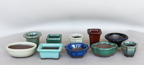 Japanese #26-06 Glazed Micro-Mame Ceramic Bonsai Pot (10 Piece Set)