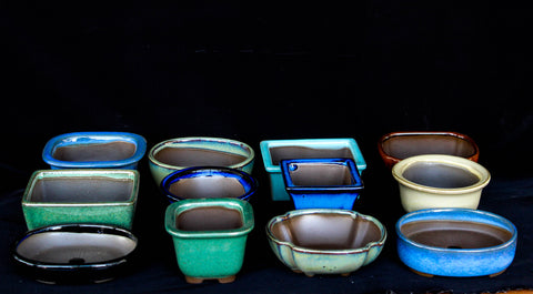 Japanese #26-09 Glazed Shohin & Mame Ceramic Bonsai Pot (12 Piece Set)