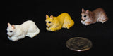 "1""L x 0.5""H Tiny Cat in Assorted Colors Resin Bonsai Figurine"