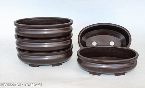 "Oval 6.8"" L x 4.5"" W x 2.25"" H Bonsai Plastic Training Pot - Set of 5"