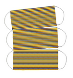 Face Mask (w Pleats for Filter (Riviera Stripe)