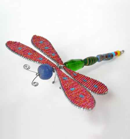 Maasai Large Dragonfly