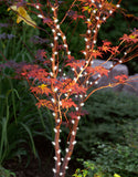 60-Inch Multi-Strand: 150 Lights: Incandescent CLEAR