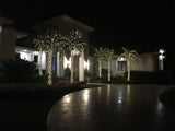 LED Palm Tree Lighting Kit, Up to 10' Palm, 200 Lights with Twinkle Tips