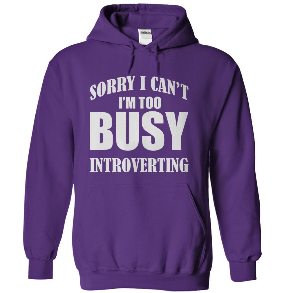 I'm Too Busy Introverting