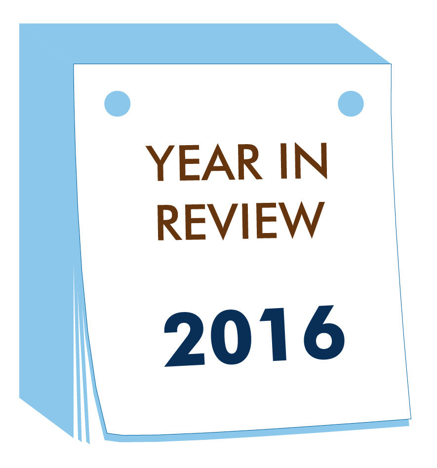Year in Review - Recap of 2016 Goals