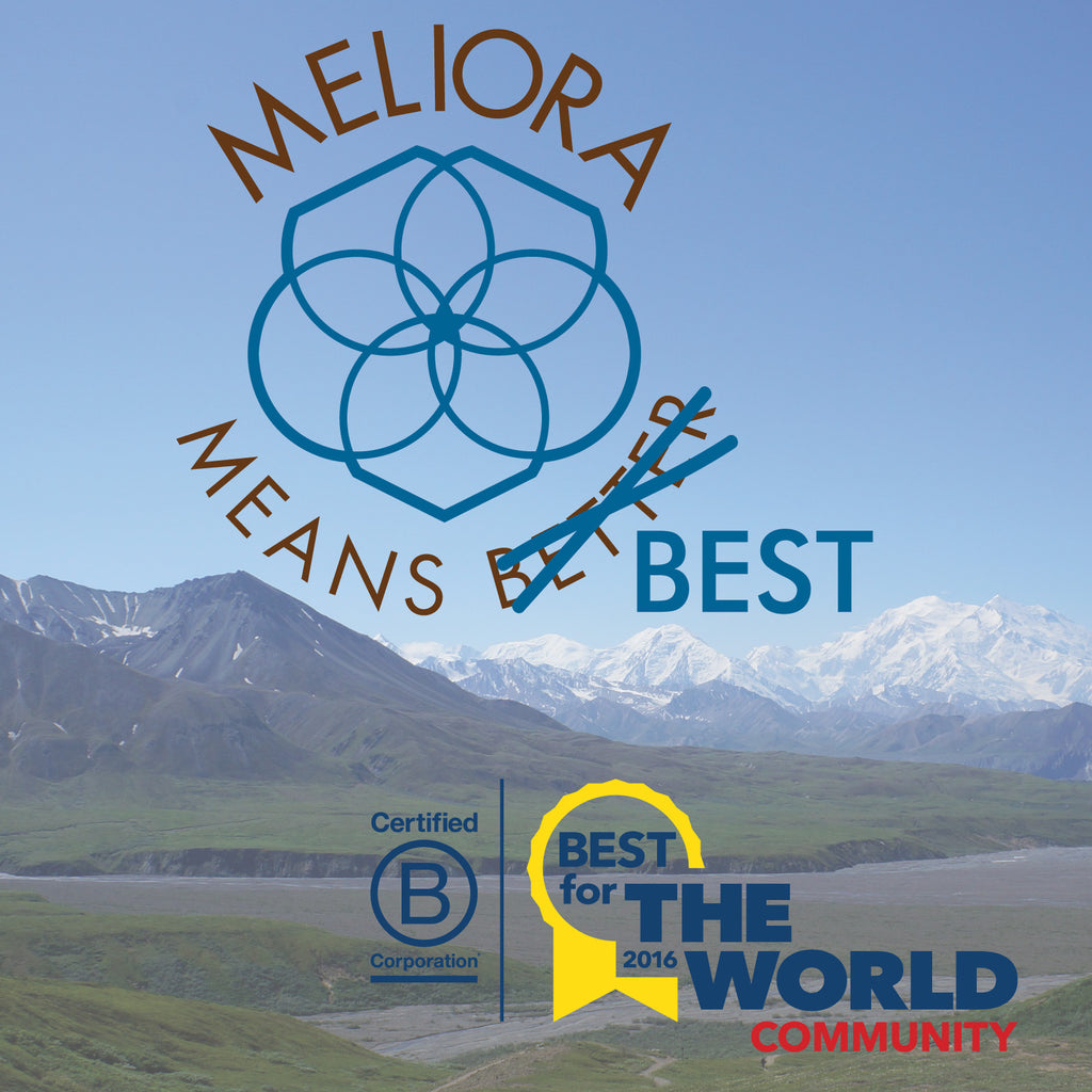 Meliora Means Best (for the World)!