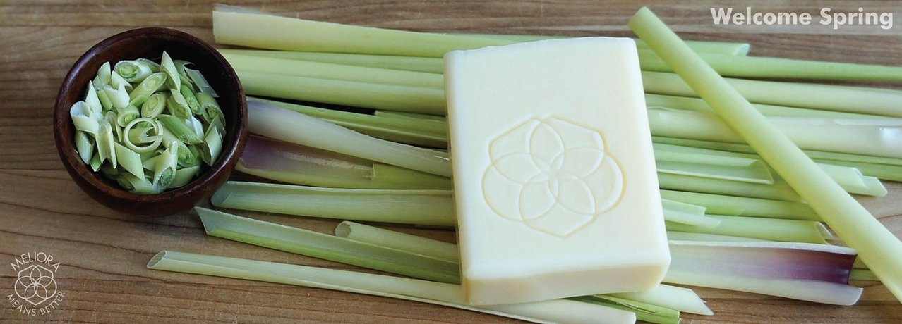 Lemongrass Bath & Body Soap Bars now Available!