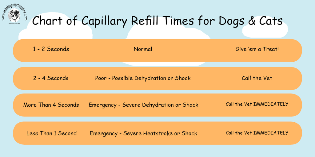 Chart of Capillary Refill Times for Dogs and Cats