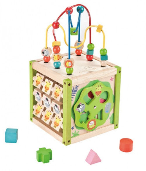 EVEREARTH My First 5in1 Activity Cube