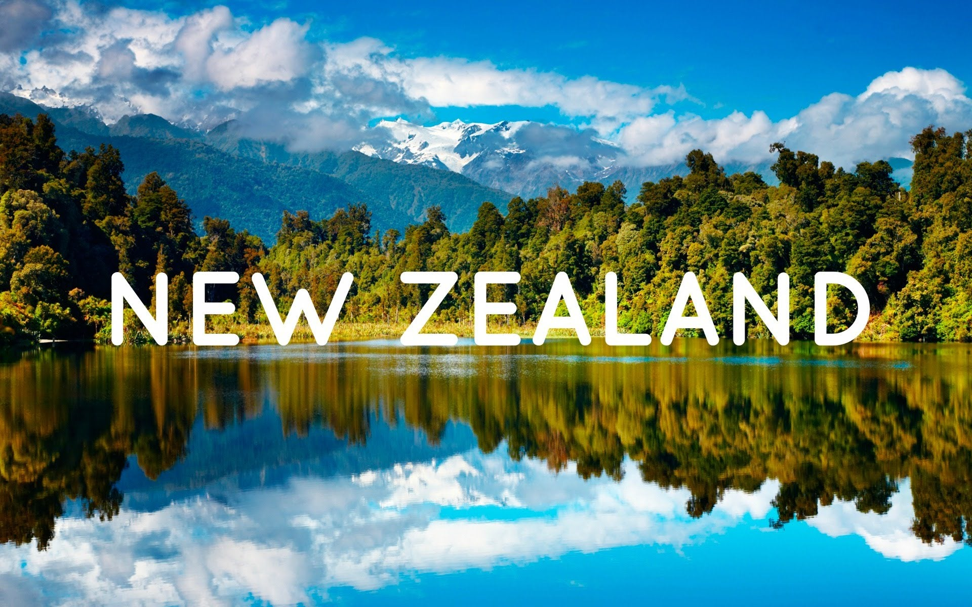 New Zealand Shipping